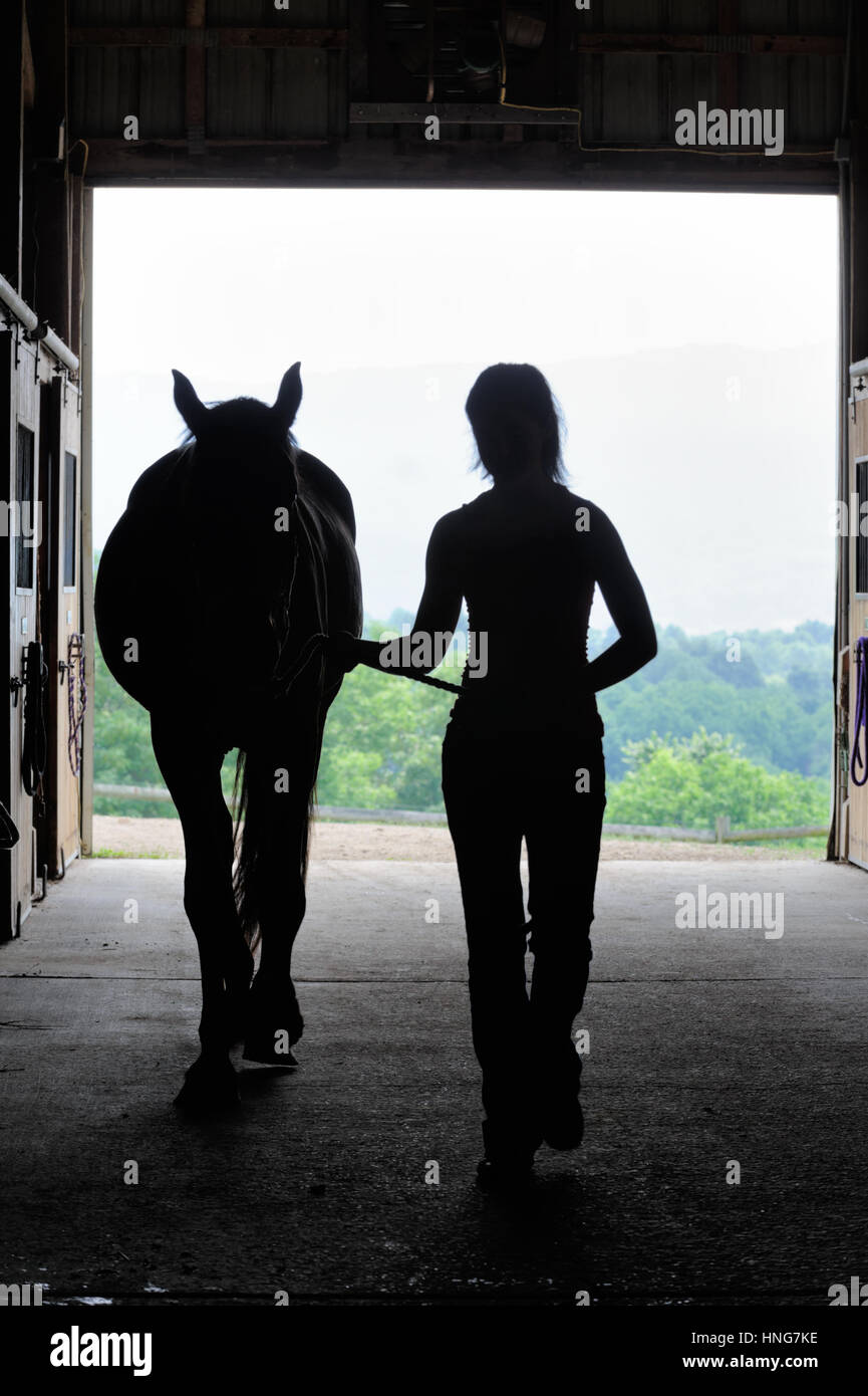 Young Woman Silhouetted With Horse In Open Barn Door Walking From Stock Photo Alamy