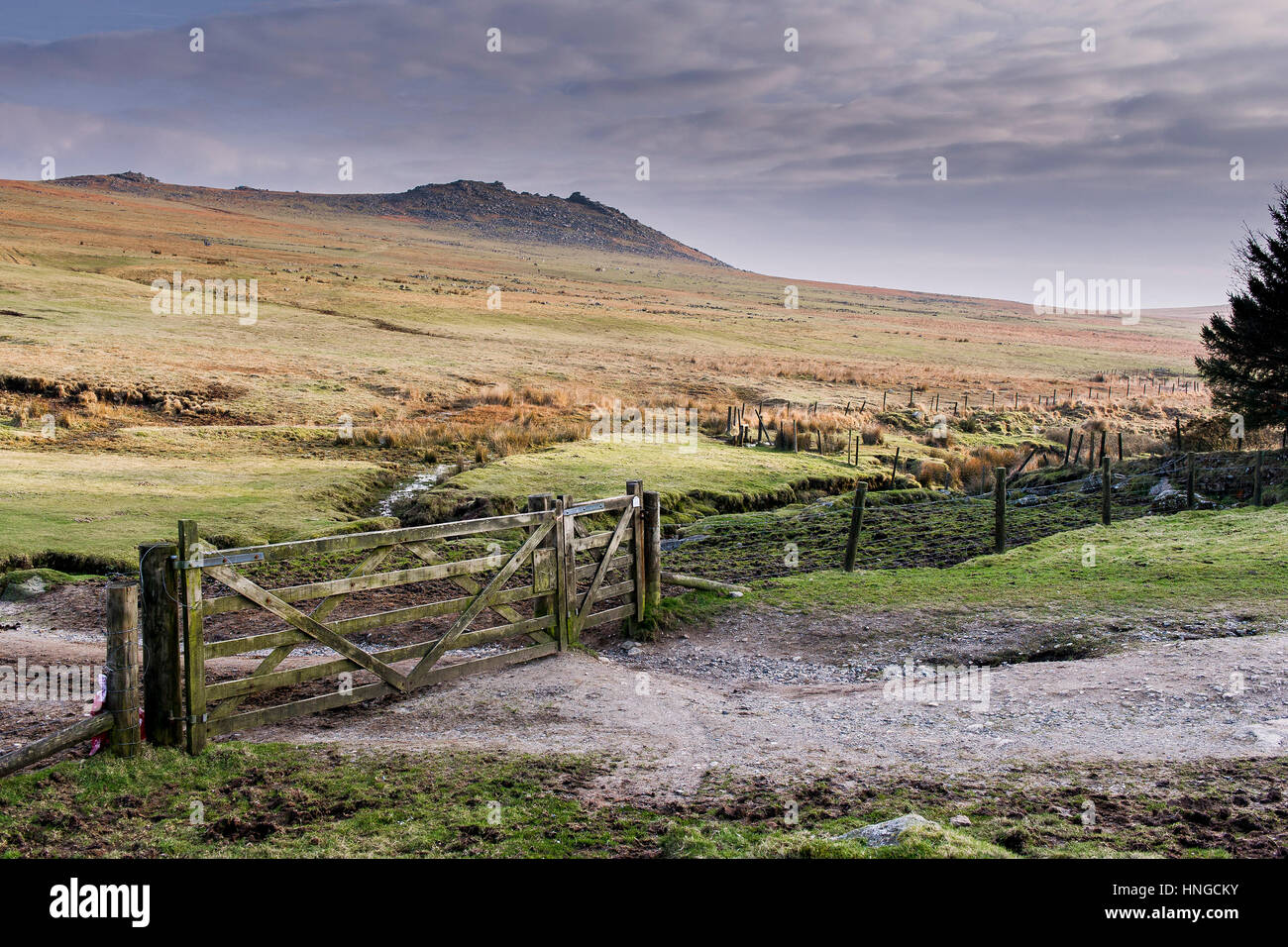 A wooden gate in a fence on Rough Tor, designated as an area of Outstanding Natural Beauty on Bodmin Moor in Cornwall. - Stock Image