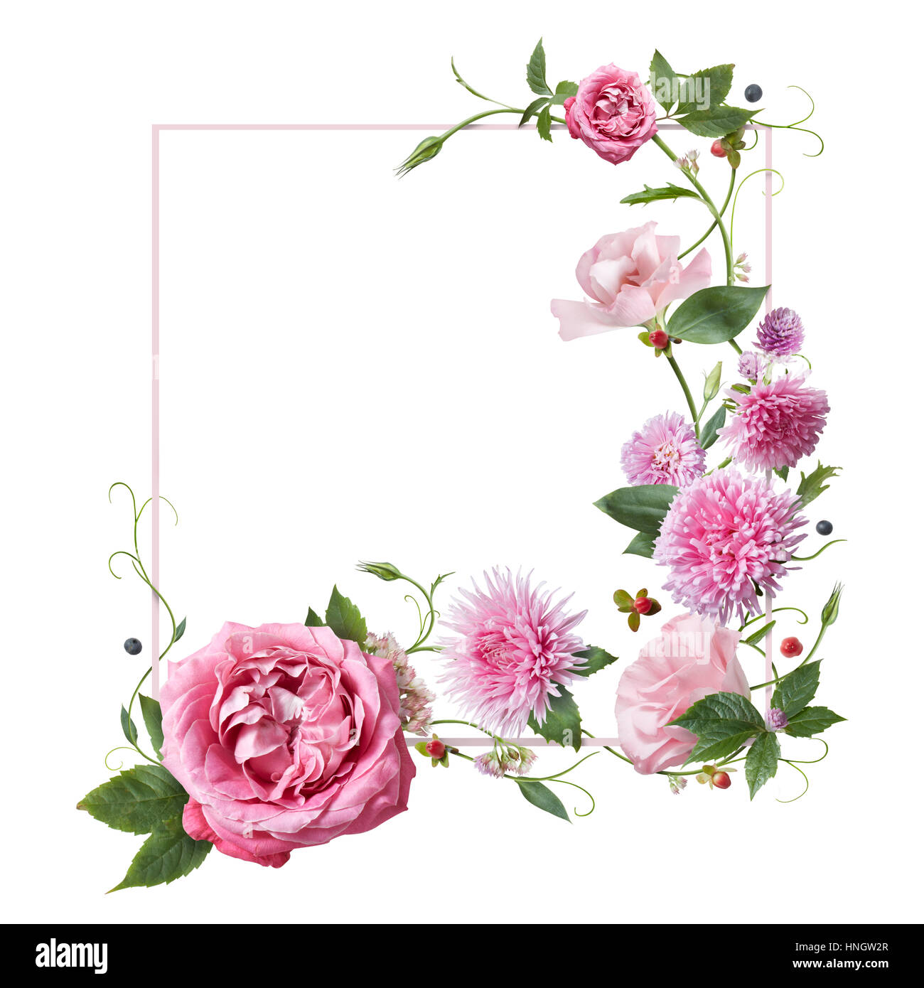 Square Frame Of Pink Flowers On A White Background Stock Photo