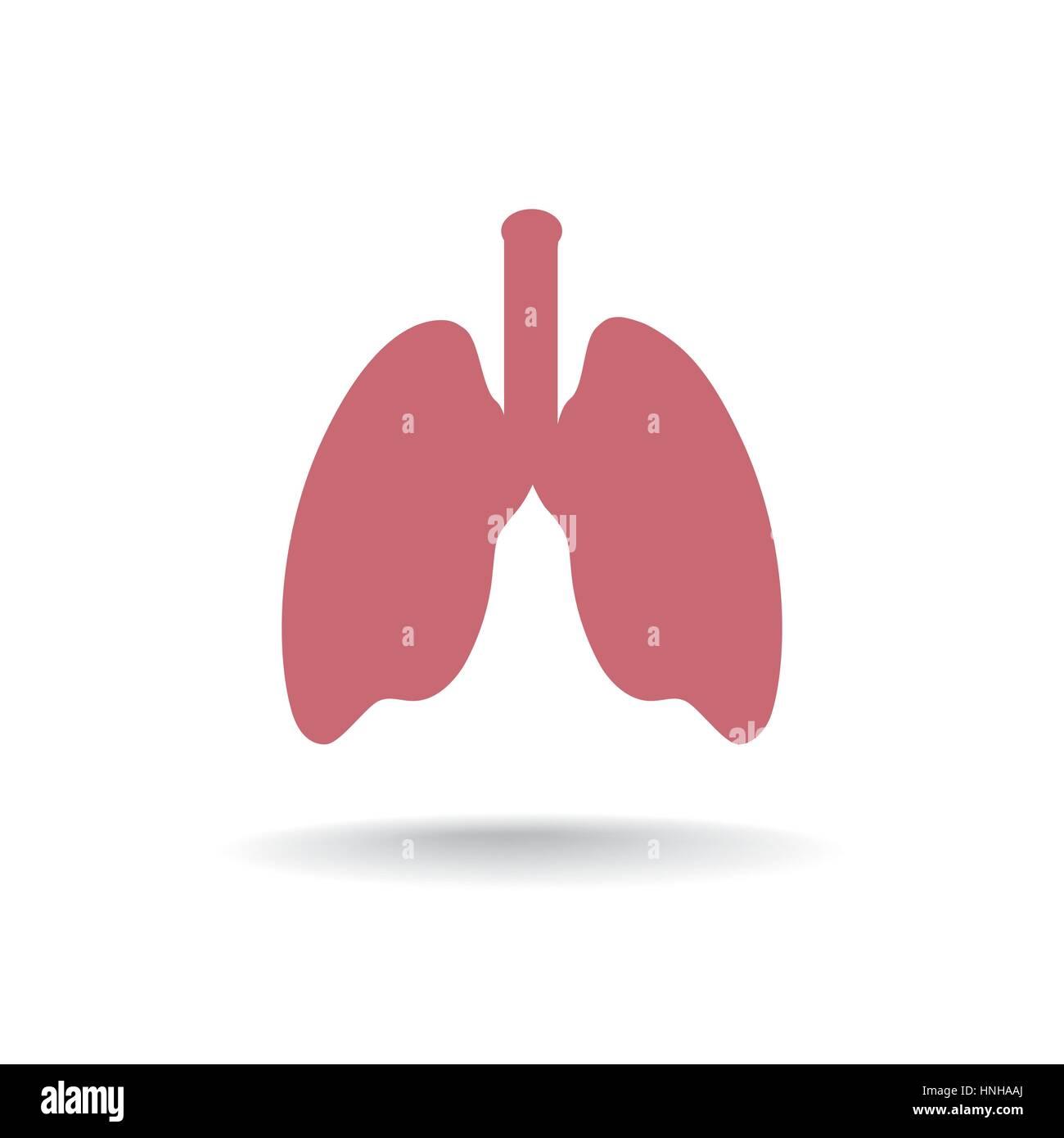 Human Lung Medical Organ Sing. anatomy icon. - Stock Image