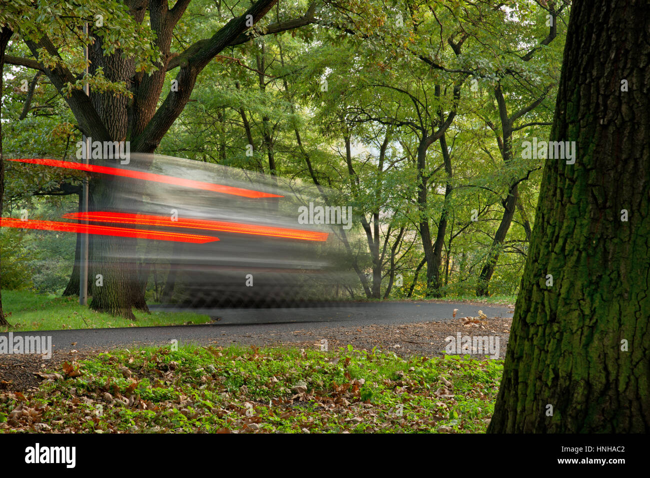Fast going car in the park with trunk of tree - Stock Image