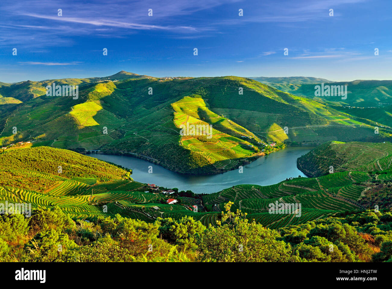 Scenic view to the Douro Valley in northern Portugal - Stock Image