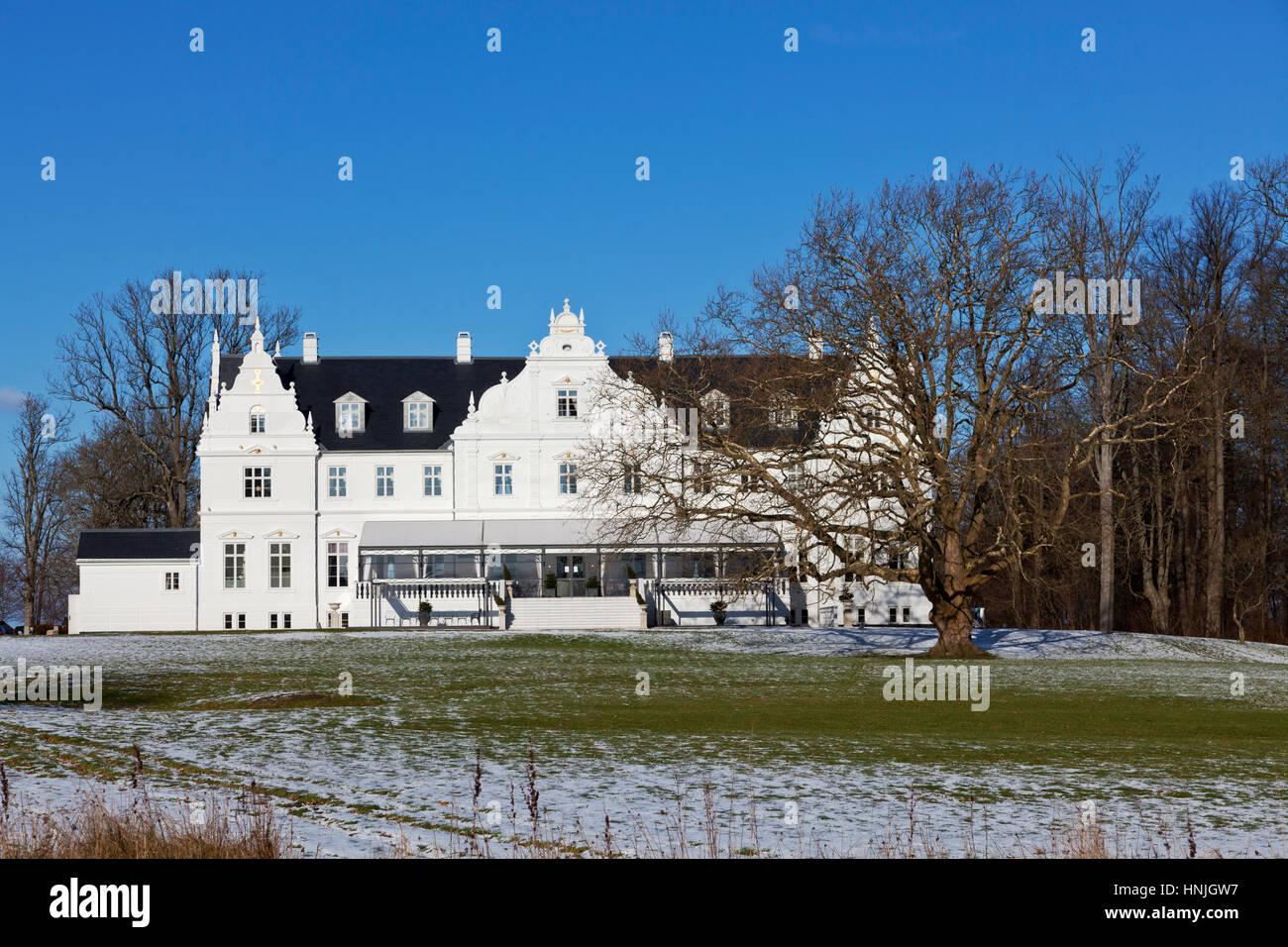 Kokkedal Castle Copenhagen, a luxurious castle hotel in winter landscape, a big, old leafless tree in front. Kokkedal - Stock Image