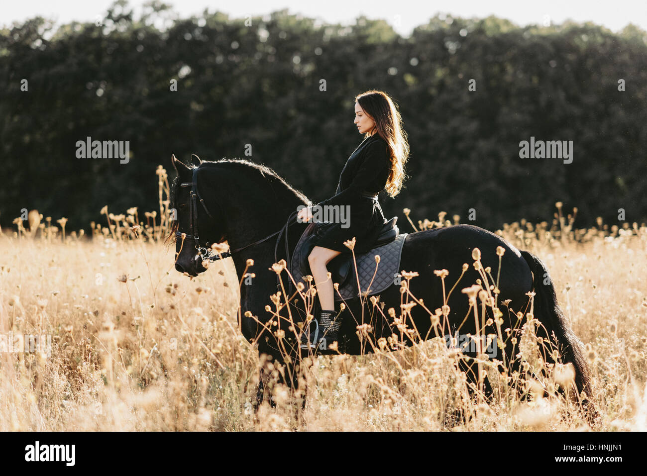 Caucasian Young Female Wearing Black Clothing Riding Her Black Horse Stock Photo Alamy