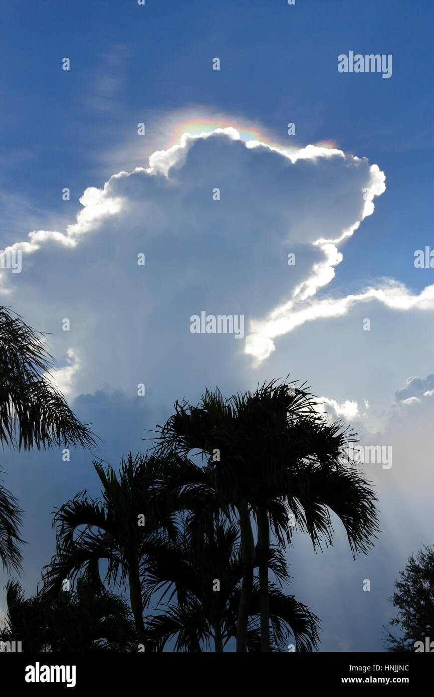 Ice crystals illuminated by the sun above a cumulus cloud. - Stock Image