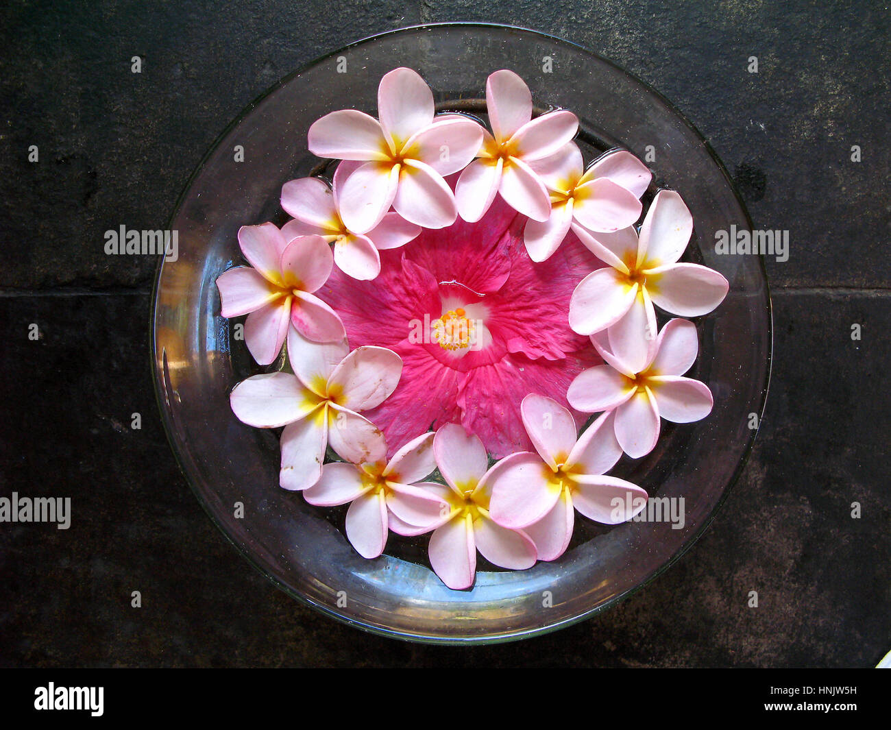 Wellness area blossom bowl with lotus flower rose and red colour wellness area blossom bowl with lotus flower rose and red colour oberoi luxushotel mauritius spa dish with blossoms the oberoi izmirmasajfo