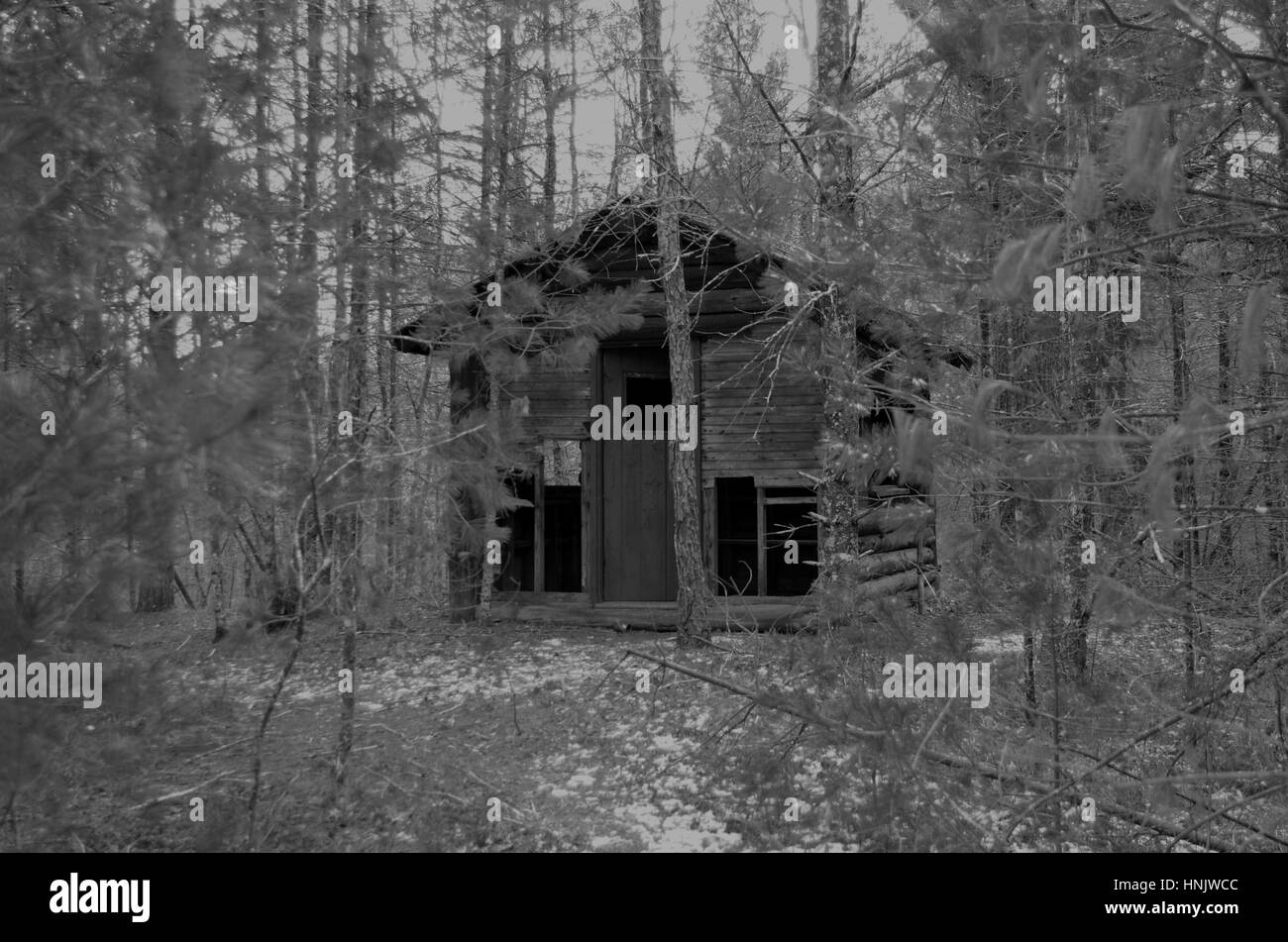 Spooky cabin in the woods (black and white) - Stock Image