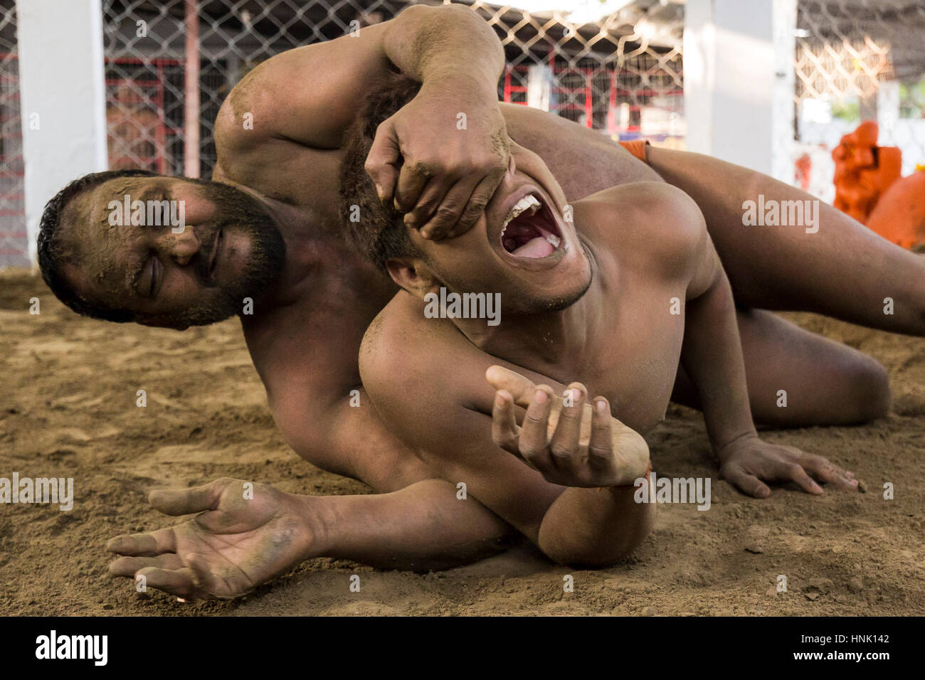 Wrestling match. At around 7am local wrestlers practise their art on a small caged area of sand set just back from - Stock Image