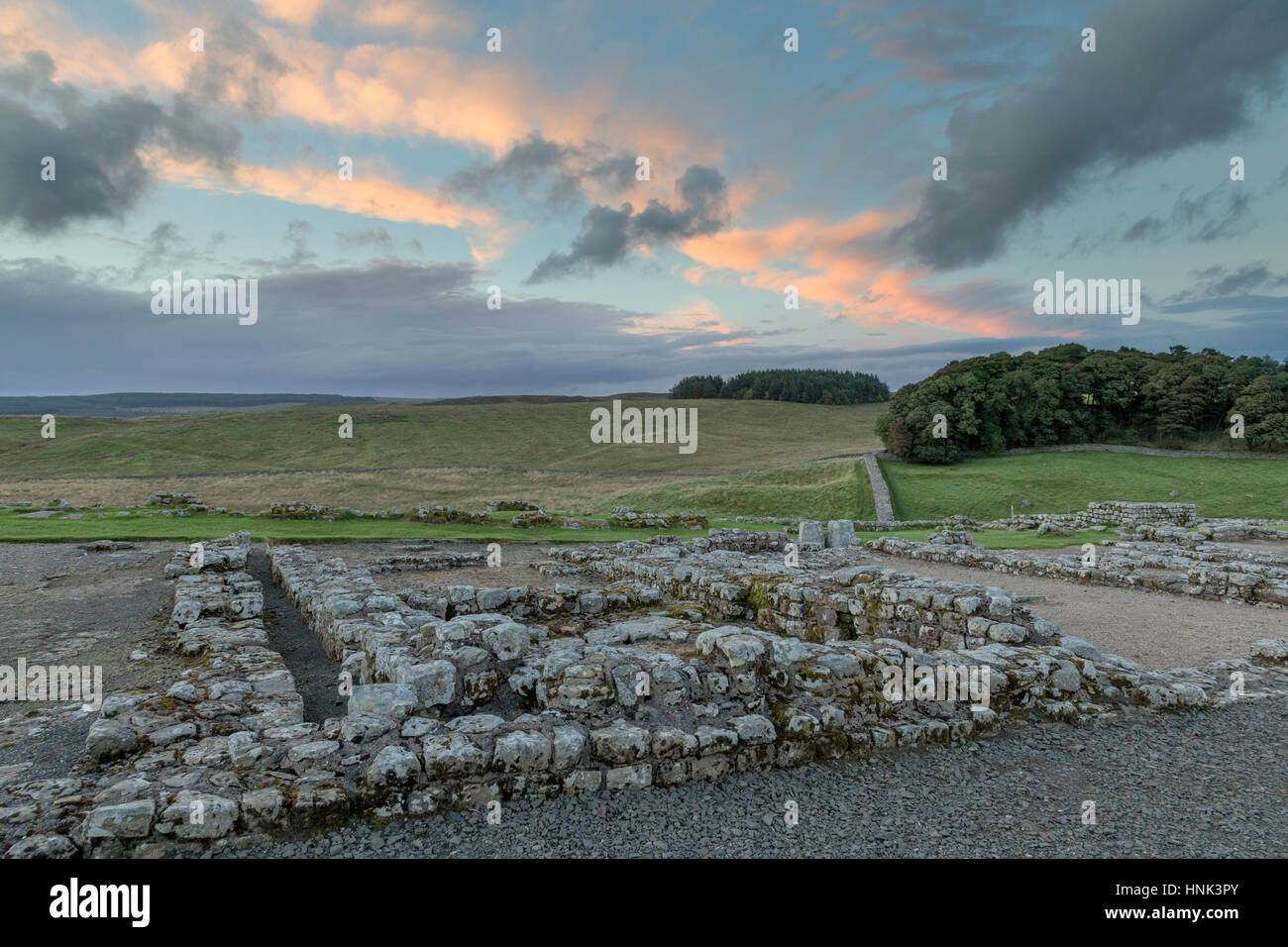 Hadrian's Wall, Housesteads Roman Fort: the view across the remains of a Barrack building (Barrack 13) looking - Stock Image