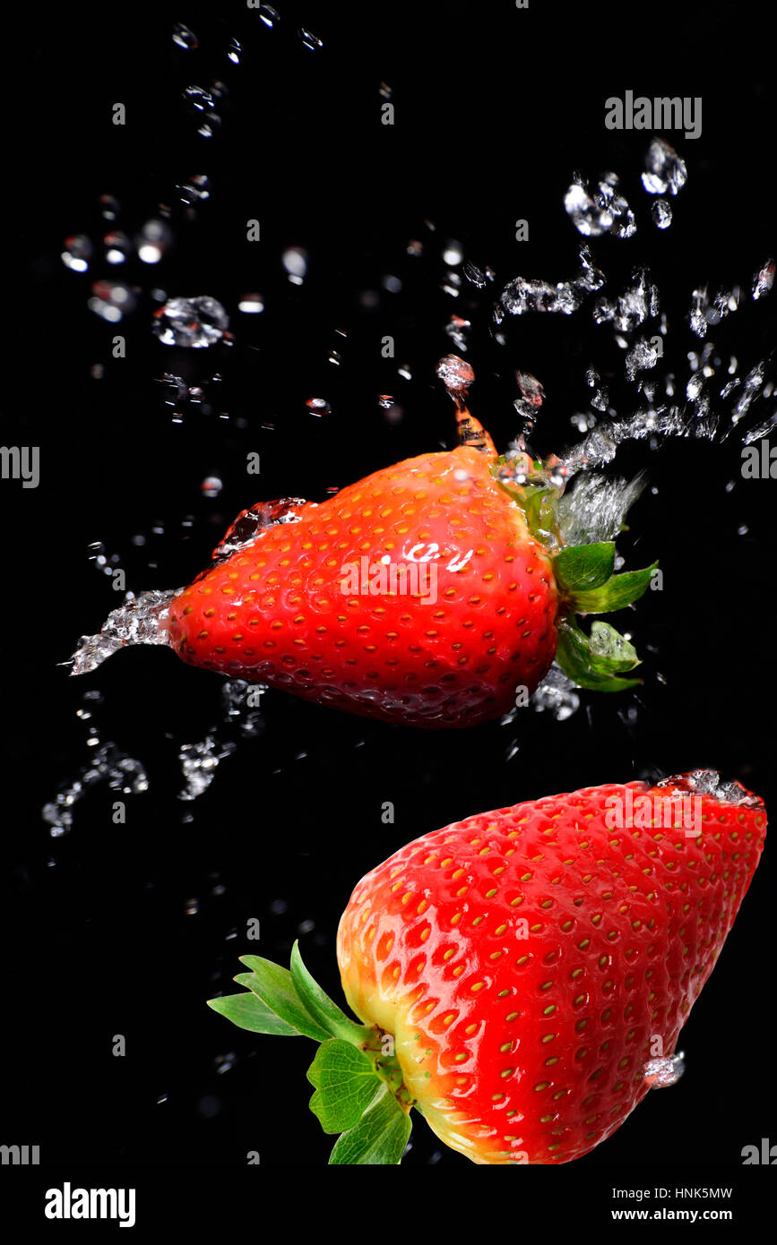 Strawberry in motion on a black background with splash of water - Stock Image