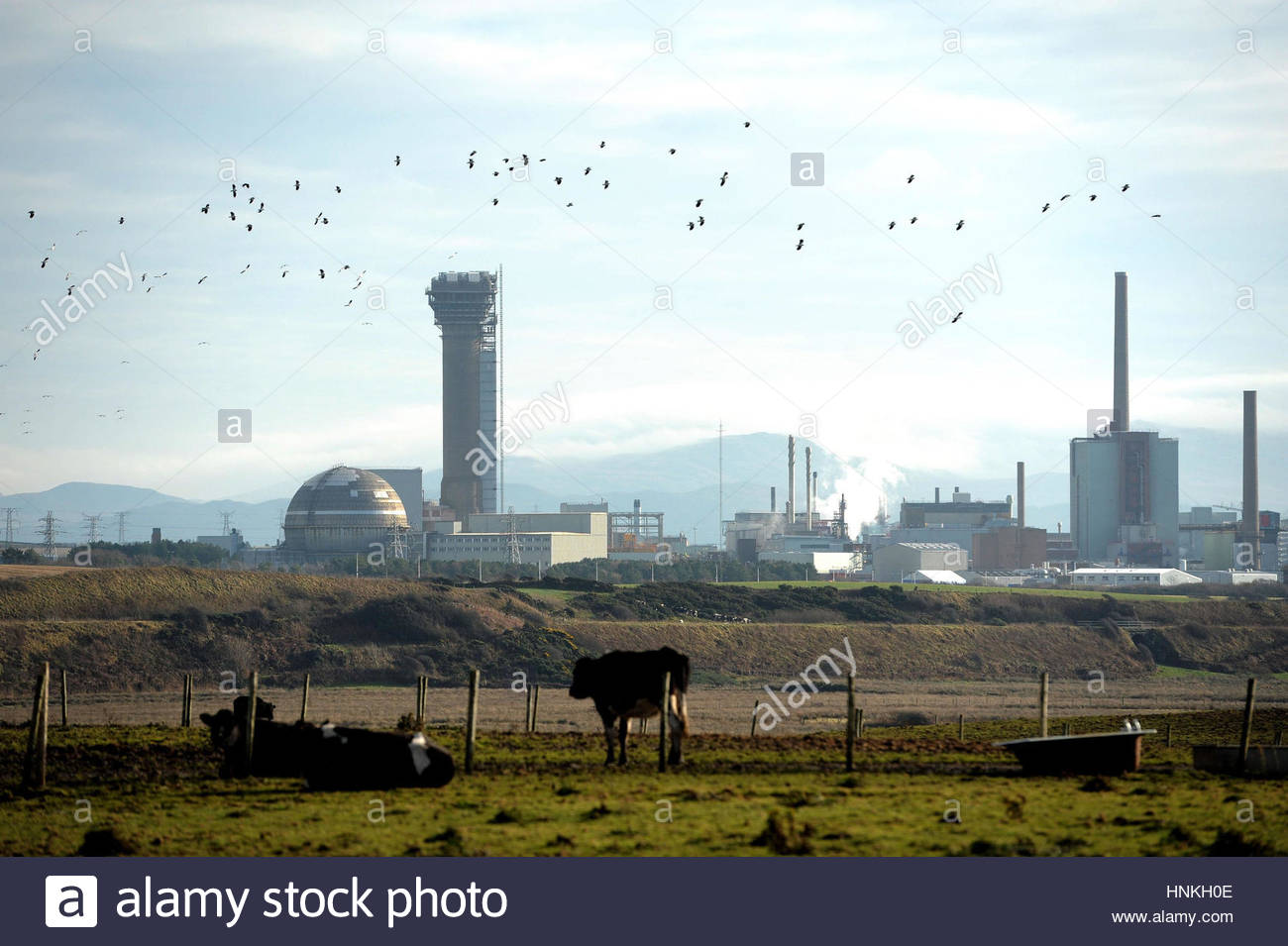 File photo dated 16/11/10 of Sellafield nuclear plant in Seascale, Cumbria. Union leaders have demanded clarity Stock Photo
