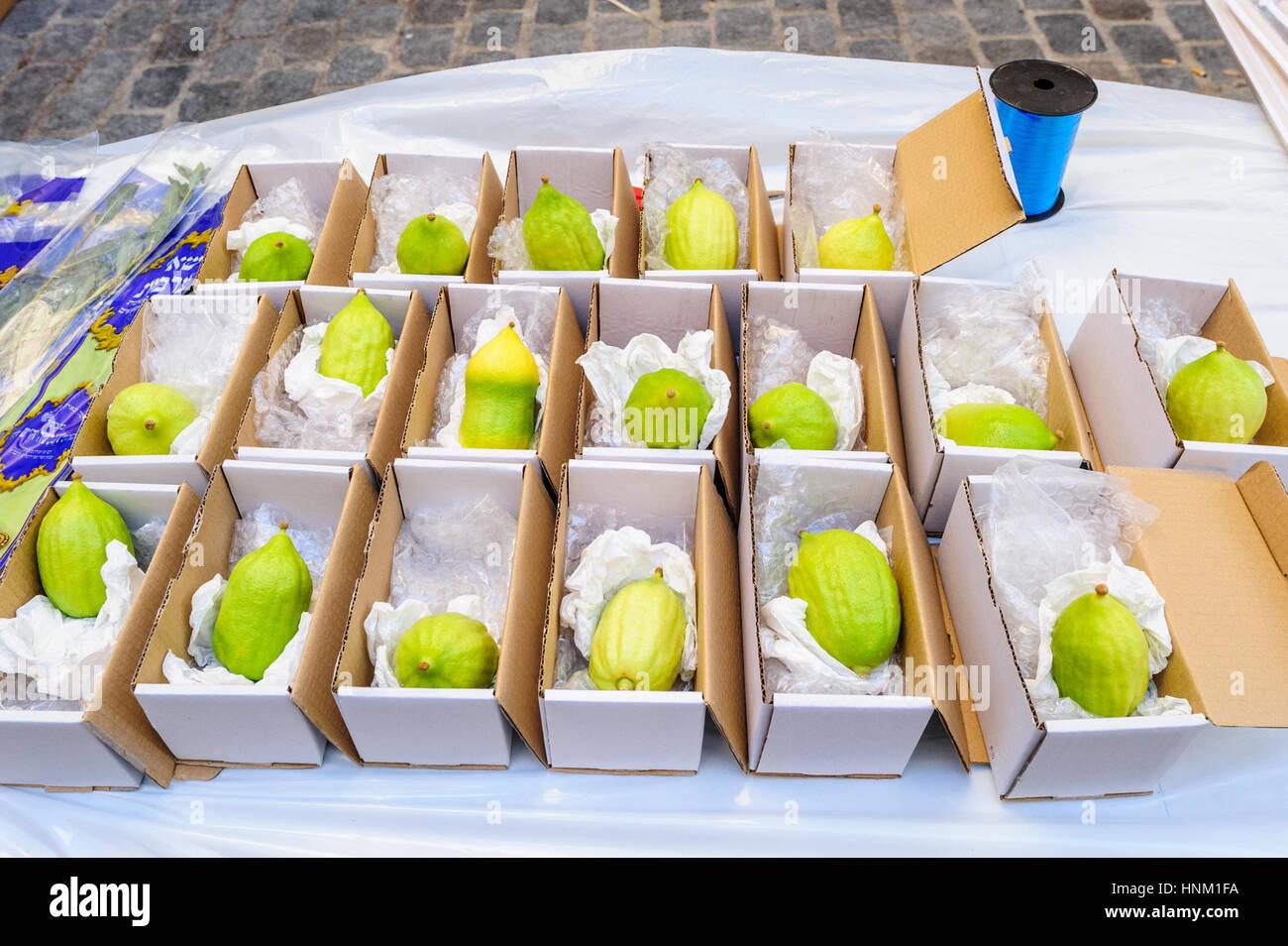 France, Paris, le Marais, etrog sold at sukkot - jewish holiday - Stock Image