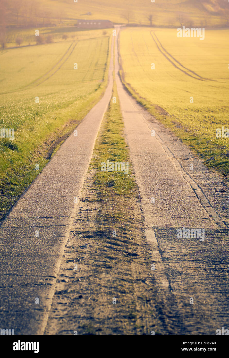 A long straight road leading to a vanishing point portrait format - Stock Image