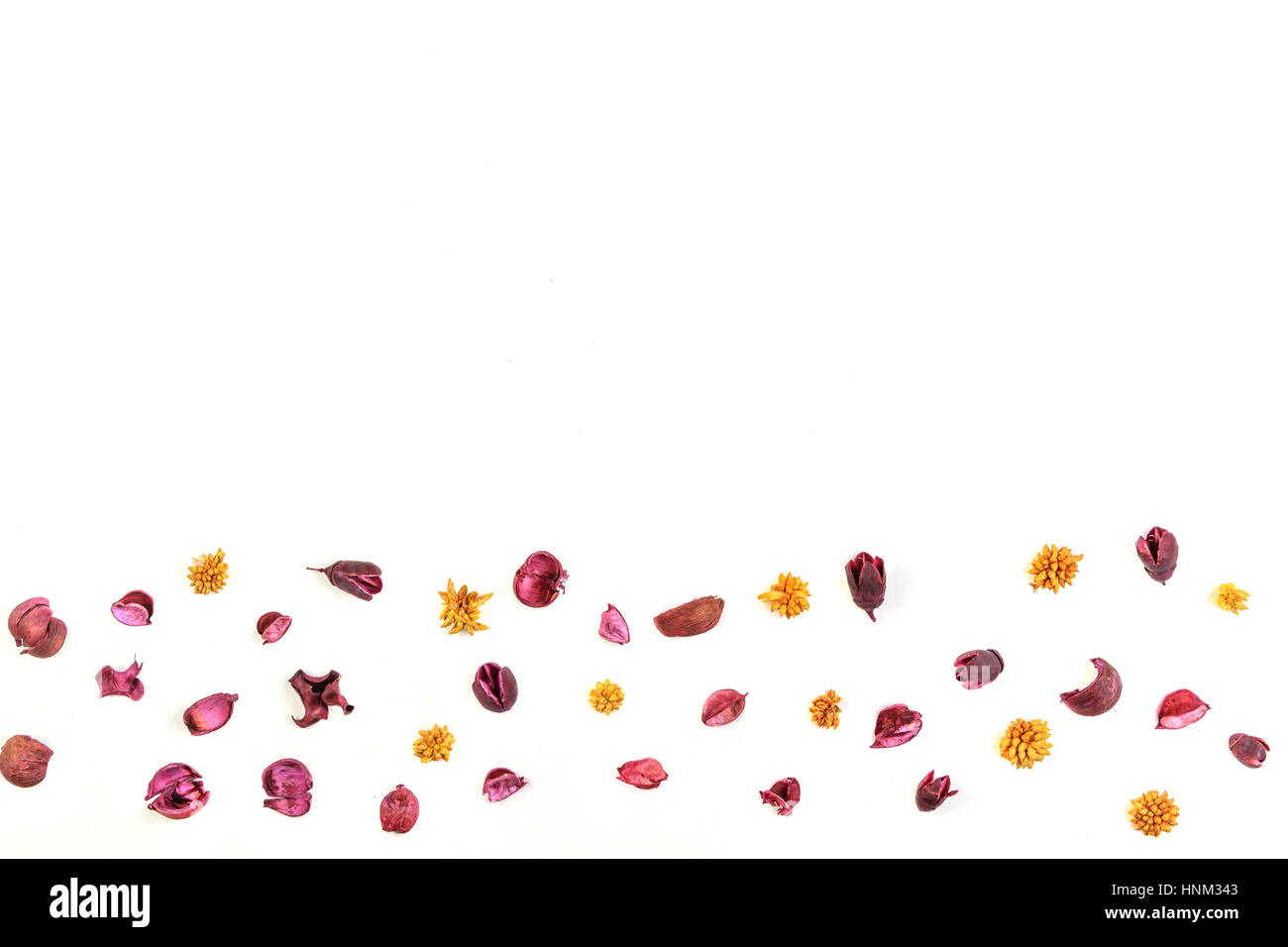 Dry flowers and leaves frame on white background - Stock Image