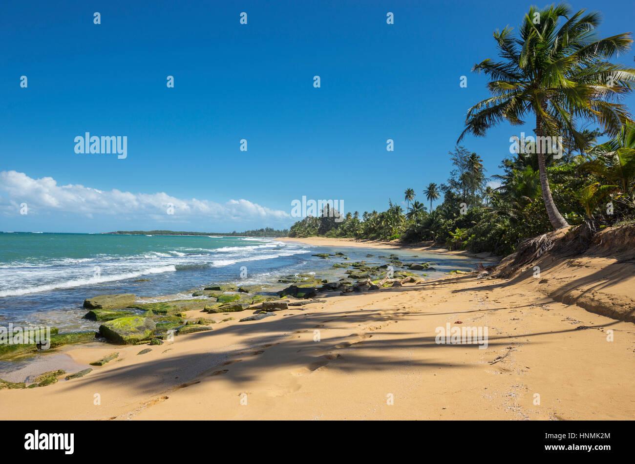 EXPOSED ROCKS PLAYA PINONES BEACH LOIZA PUERTO RICO - Stock Image