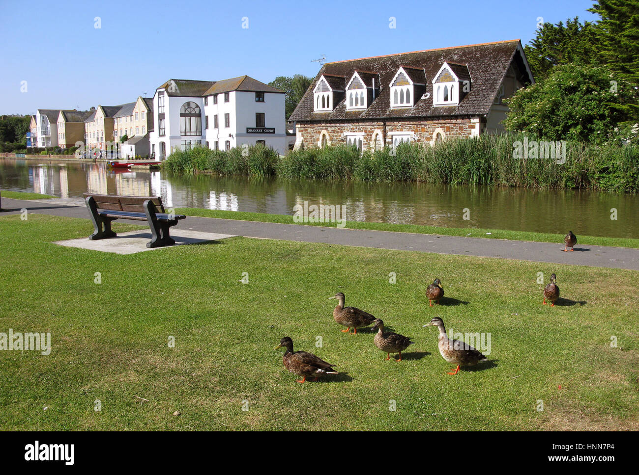 BUDE Cornwall 2013 Housing at one of the city s canals - Stock Image