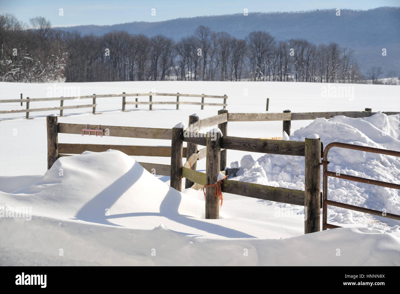 Farm fields with a fenced-in pasture in drifted winter snow for agricultural backgrounds, barren trees and mountain, - Stock Image