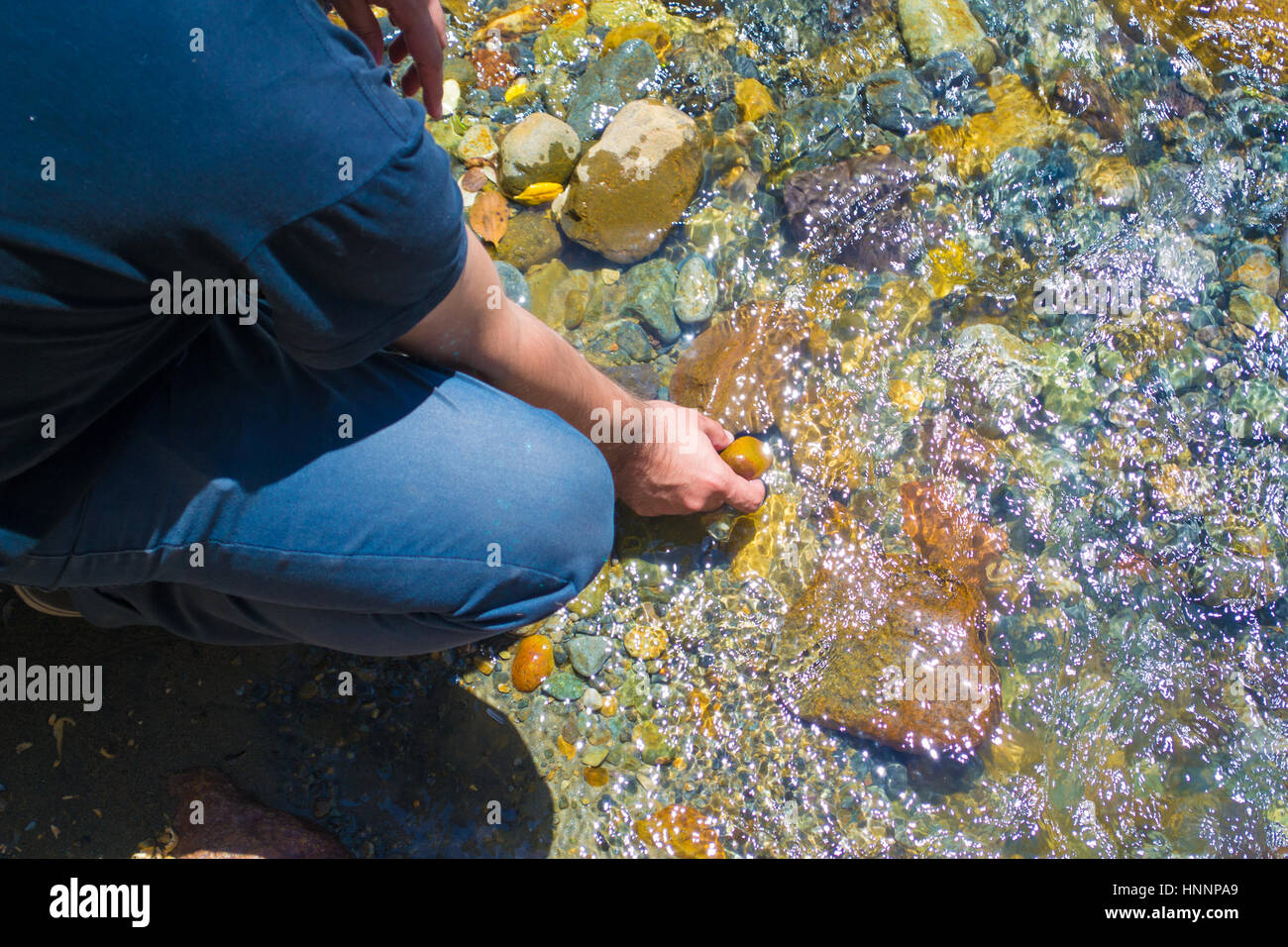 A man grabbing a stone at the river - Stock Image