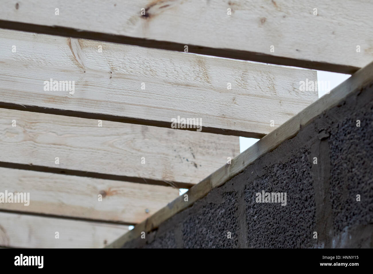 row of wooden roof rafter timbers ending on wall plate in extension construction in the uk - Stock Image