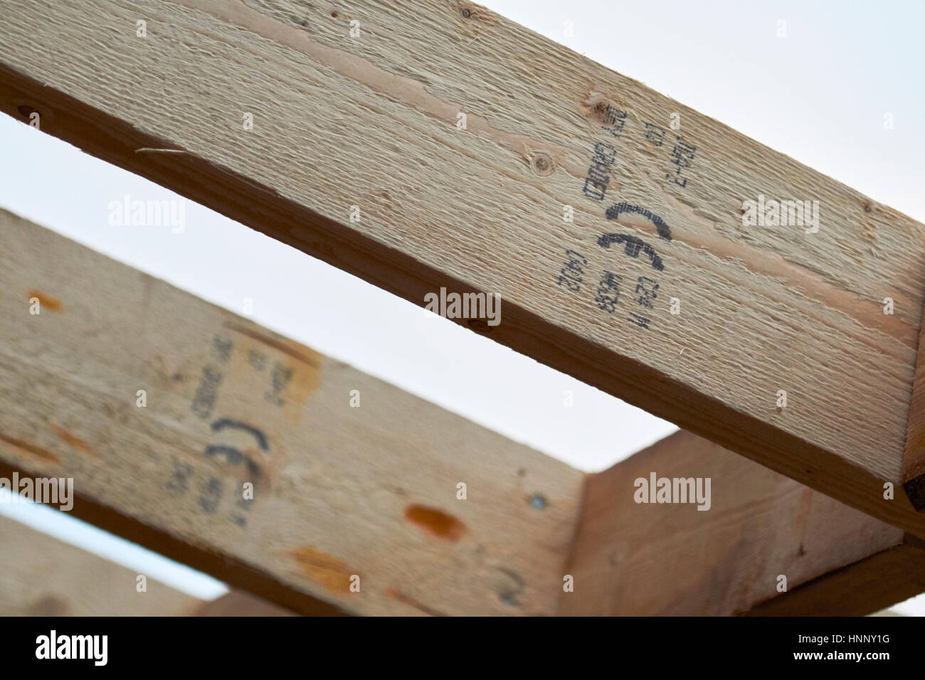 row of wooden roof ce stamped rafter timbers in extension construction in the uk - Stock Image