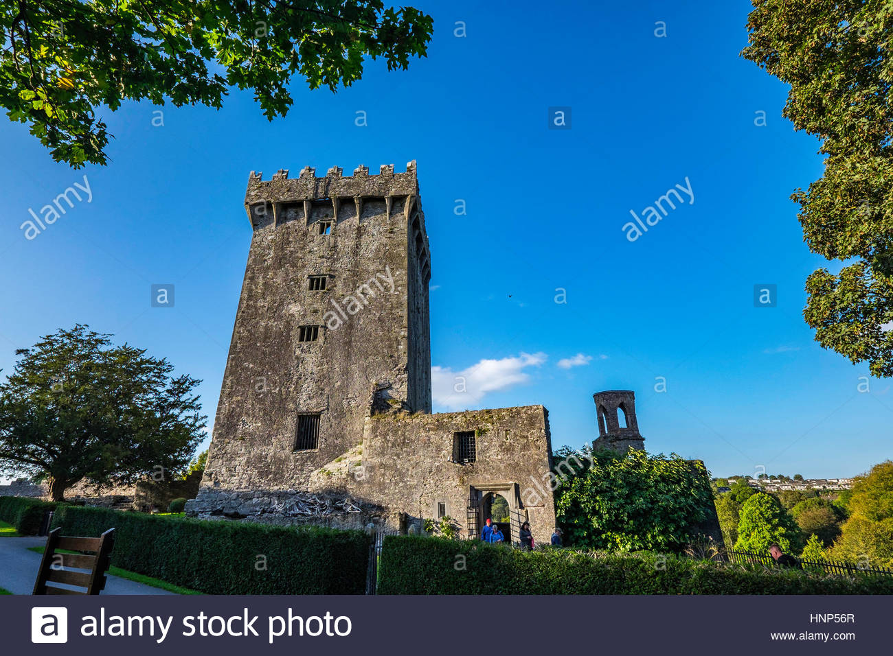 The Blarney Stone, a block of Carboniferous limestone built into the battlements of Blarney Castle, Blarney, Ireland. - Stock Image