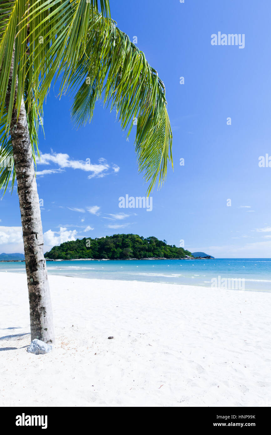 Private beach of the luxury hotel on Langkawi Island, Malaysia - Stock Image
