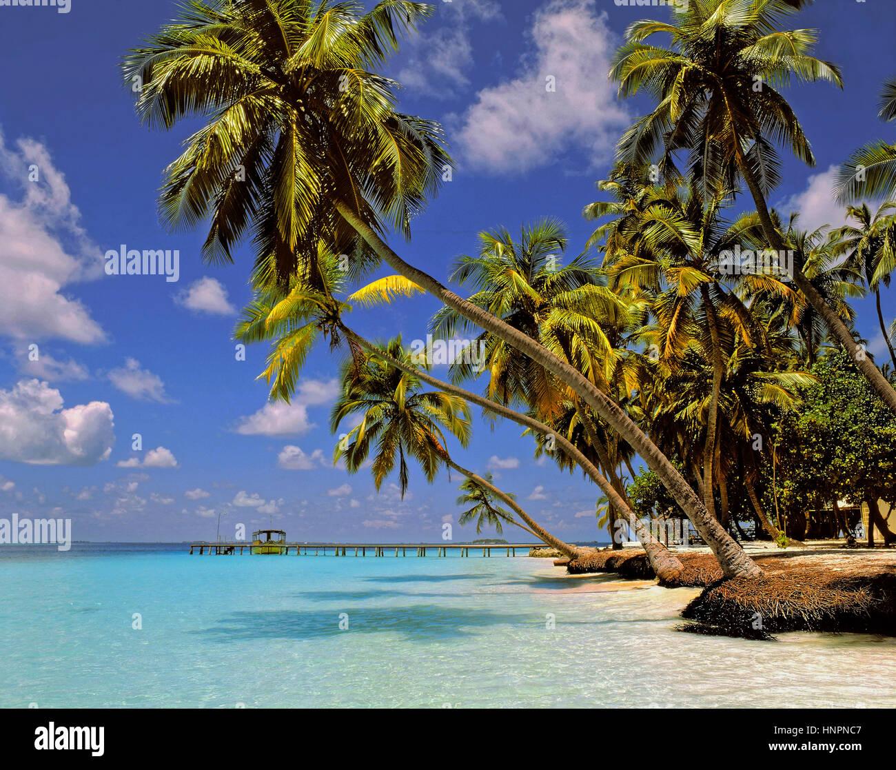 Kuda Bandos Island, North Male Atoll, Maldives, Maldive Republic, Indian Ocean Atoll Stock Photo