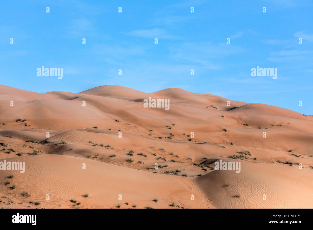 Wahiba Sands, Oman, Middle East, Asia - Stock Image