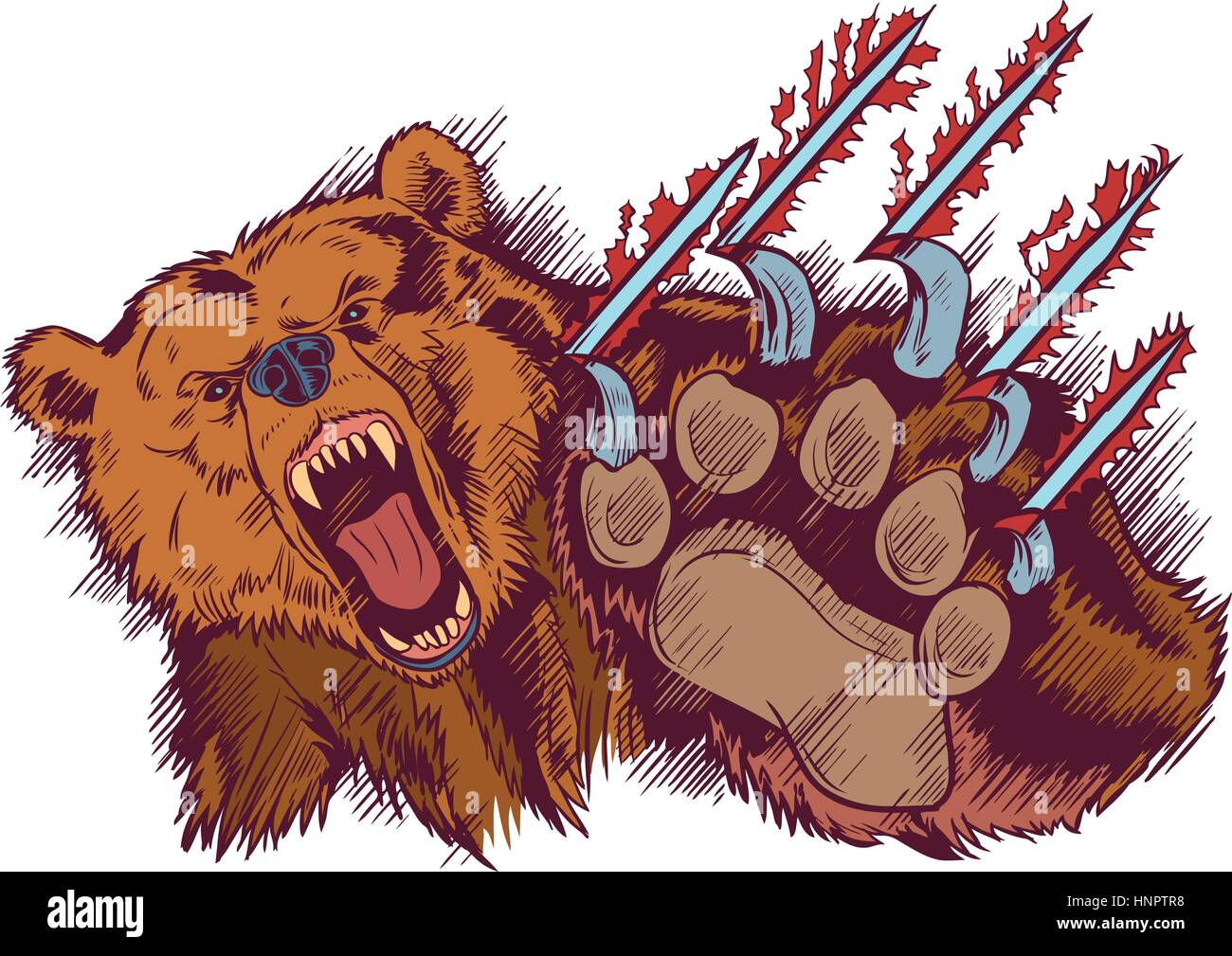 Vector Cartoon clip art illustration of a brown bear mascot slashing or clawing at the foreground. - Stock Vector