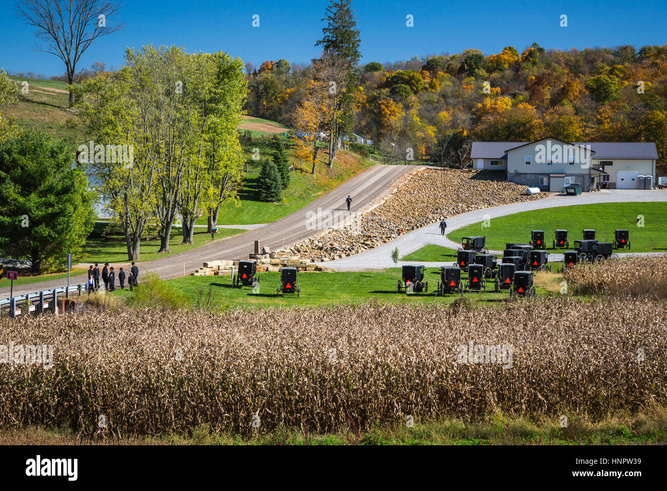 Amish Culture Stock Photos Amp Amish Culture Stock Images