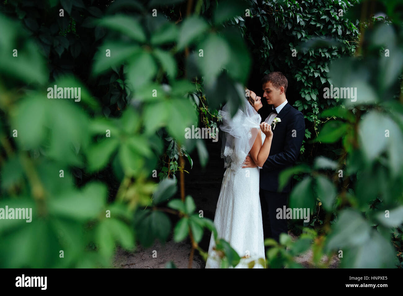 beautiful young wedding couple kissing , blonde bride with flowe - Stock Image