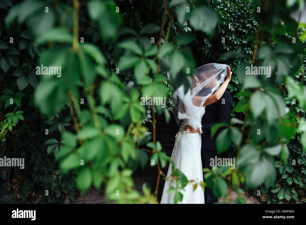 beautiful young wedding couple kissing , blonde bride with flowe Stock Photo