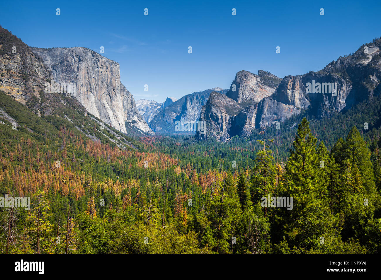 Classic Tunnel View of scenic Yosemite Valley with famous El Capitan and Half Dome rock climbing summits on a beautiful - Stock Image