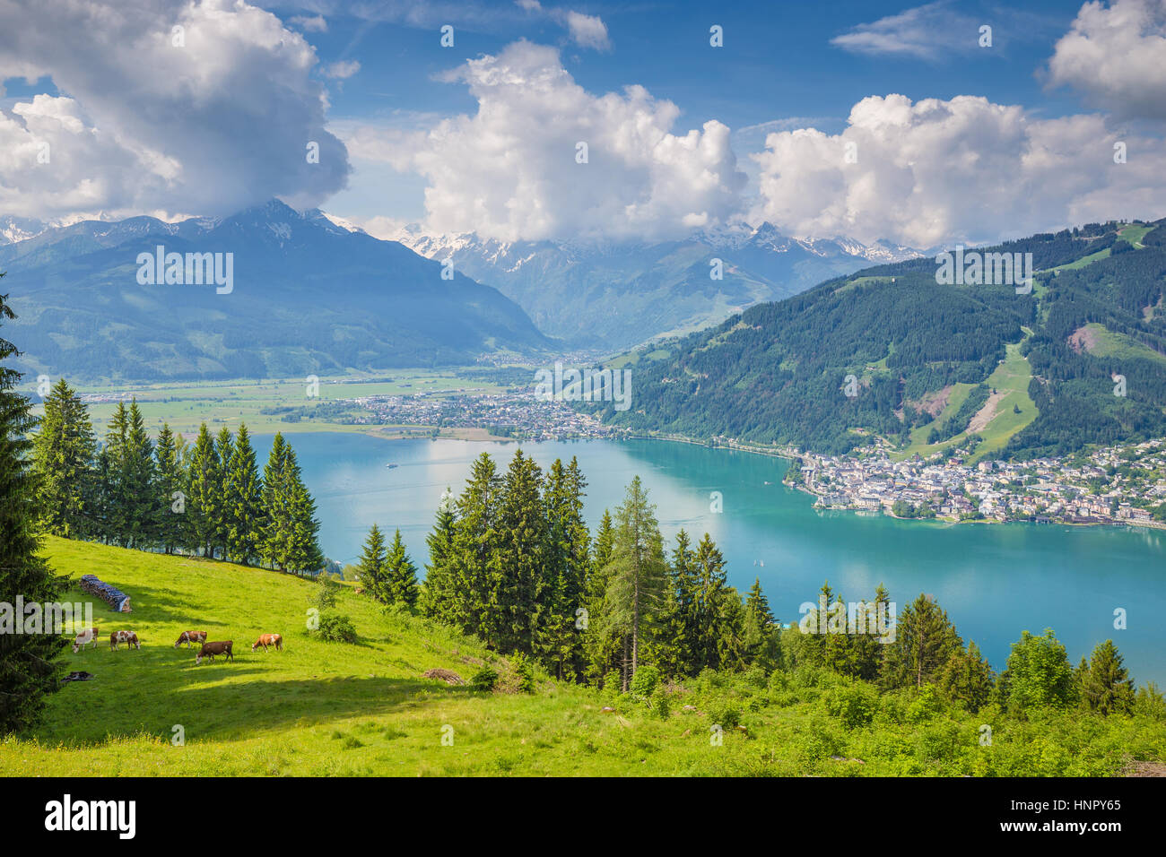 Beautiful scenery in the Alps with clear lake and green meadows full of blooming flowers on a sunny day with blue Stock Photo