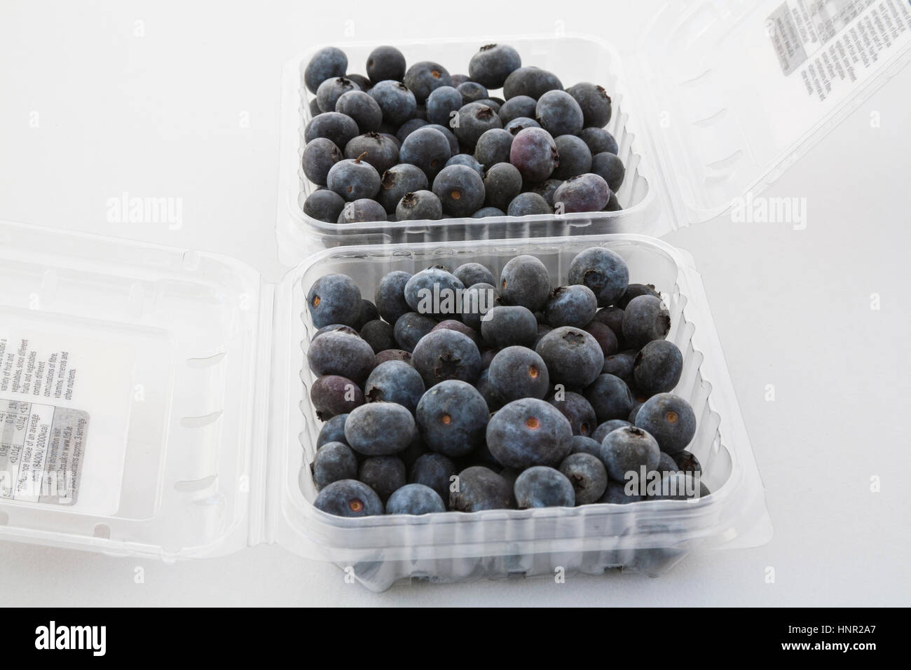 Two plastic cartons containing fresh blueberries imported from Peru on white background soft fruit full of nutrients - Stock Image