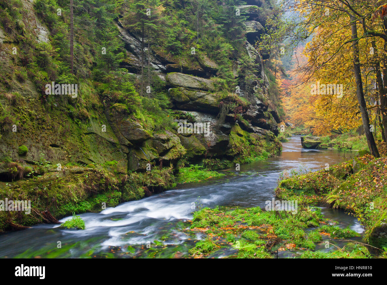 Kamnitz Gorge / Soutěsky Kamenice in Bohemian Switzerland in autumn, Ústí nad Labem Region / Ústecký Region, Czech Stock Photo