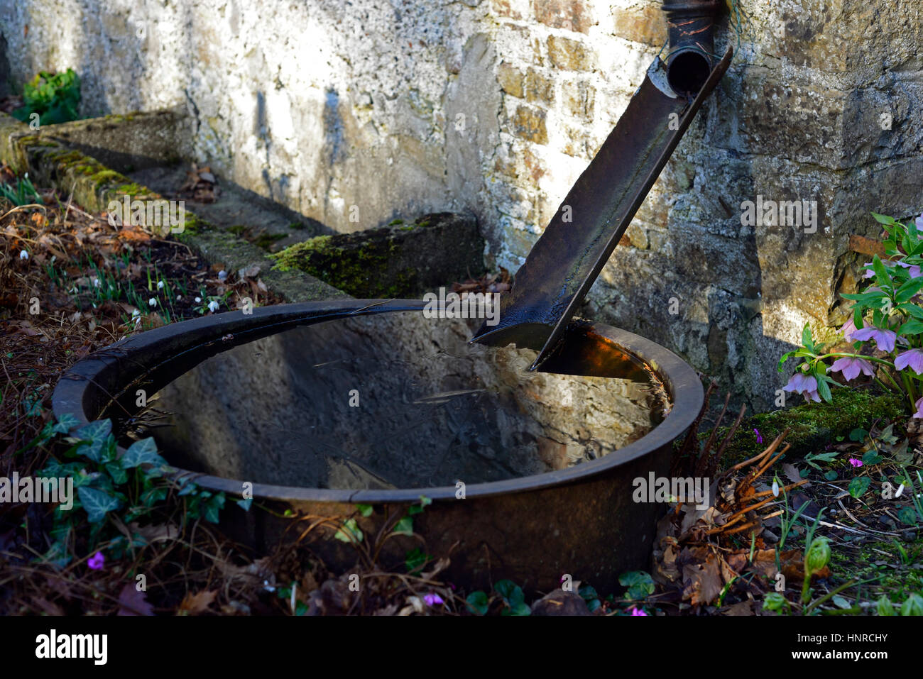 Old, Water Trough, Basin, Cast Iron, Collect, Rain, Rainwater, Garden  Feature, Makeshift, Temporary, Troughs, Collecting, Collection, Watering,