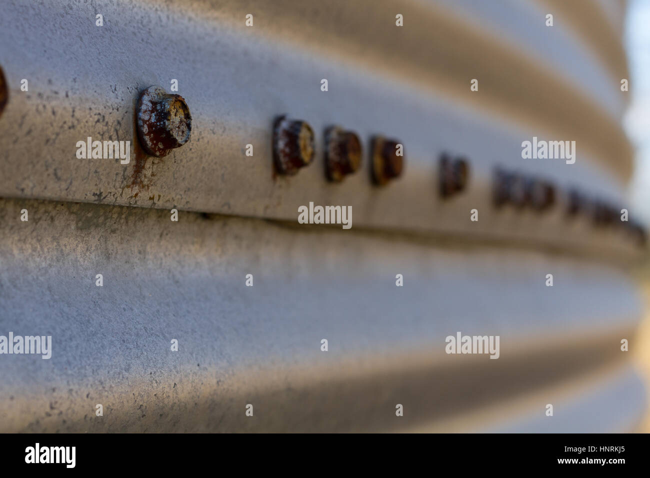 Row of rusty bolt heads fading out of focus on a galvanized sheet metal building - Stock Image