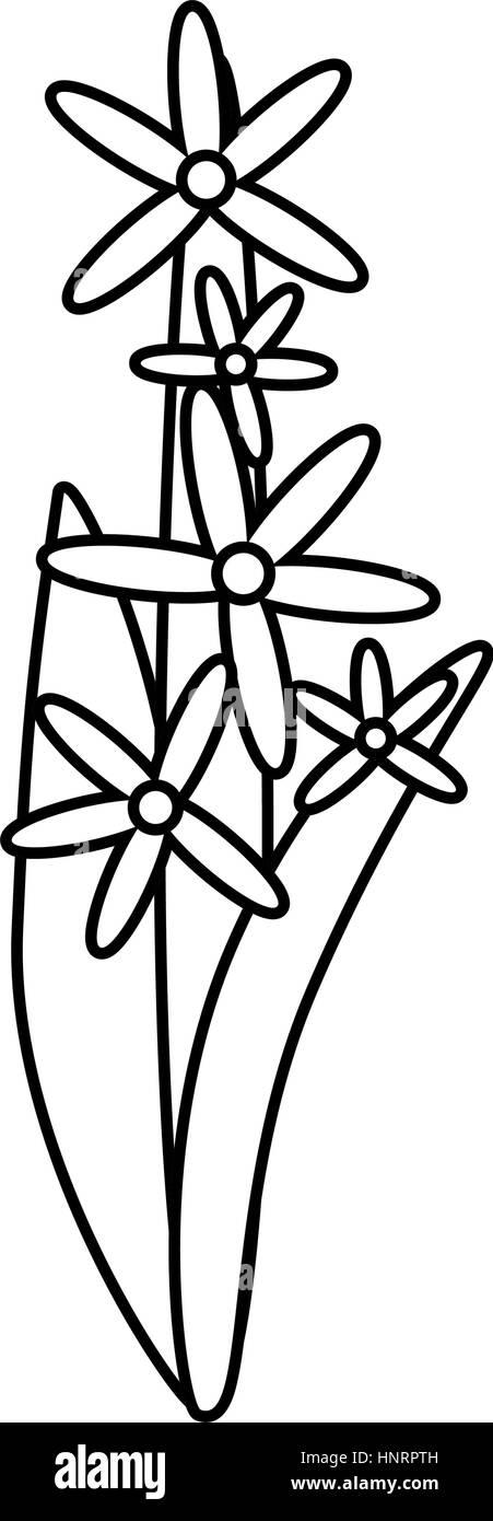 star cluster flower ornament thin line vector illustration eps 10 - Stock Vector