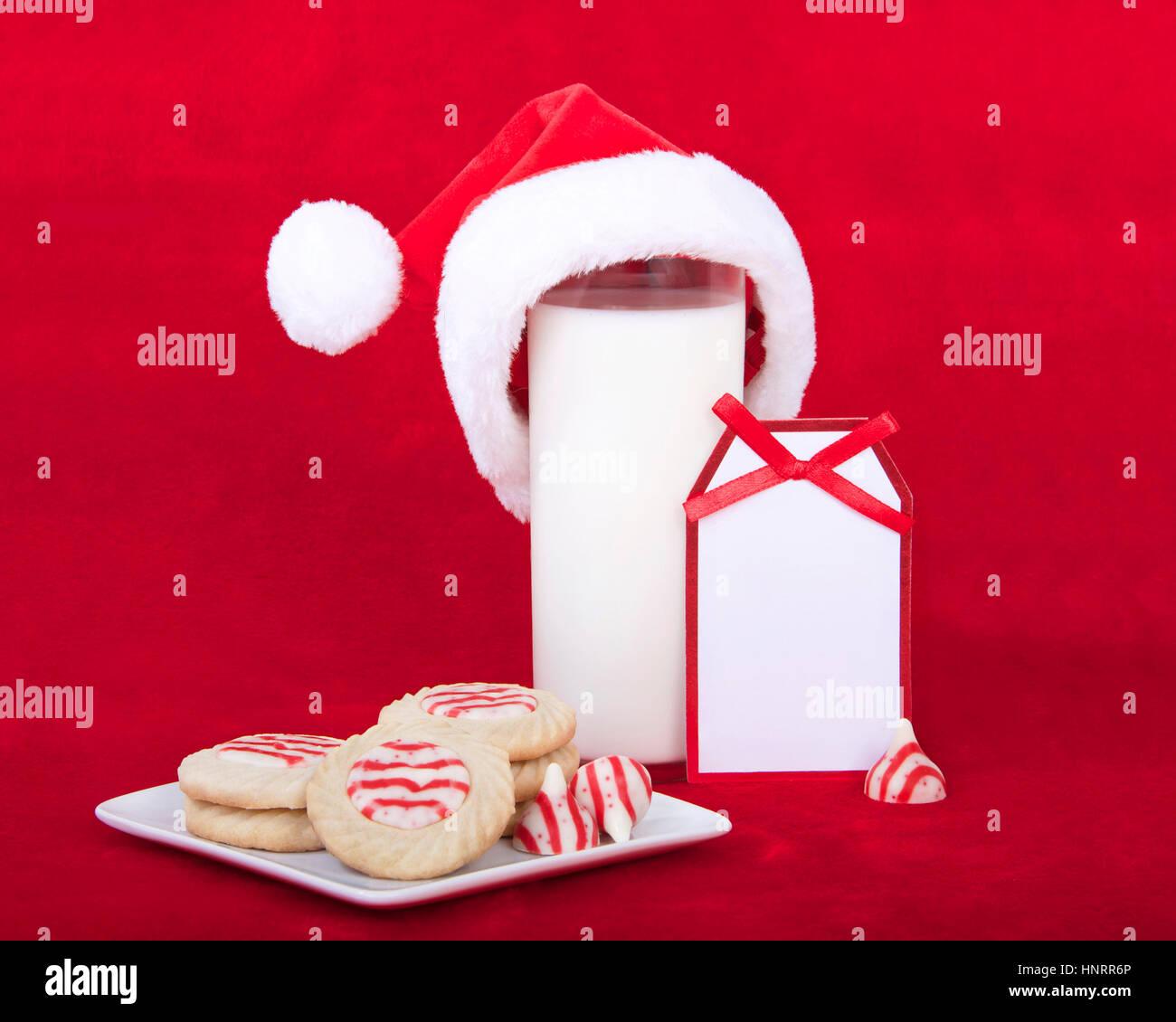Dollhouse Miniature Cookies /& Milk for Santa  # 29