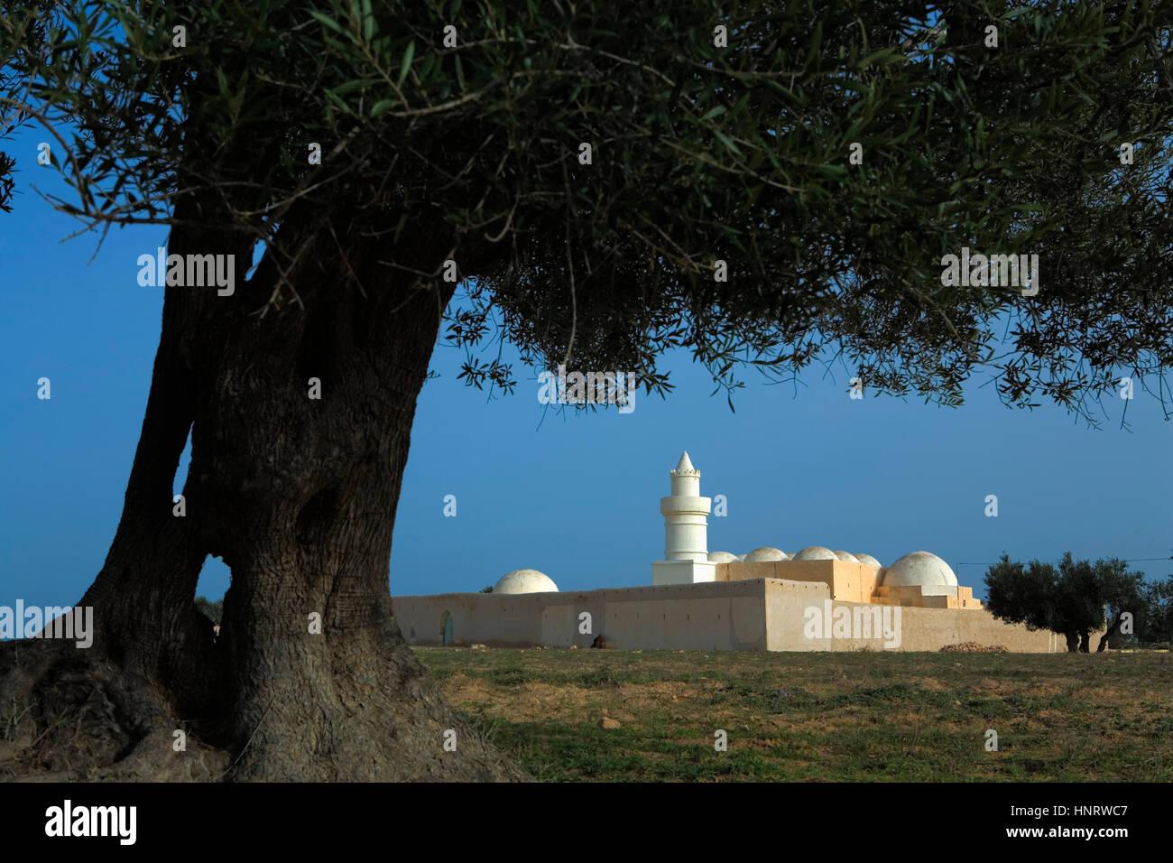 Tunisia.Djerba. Mosque, near Hara Kbira Stock Photo