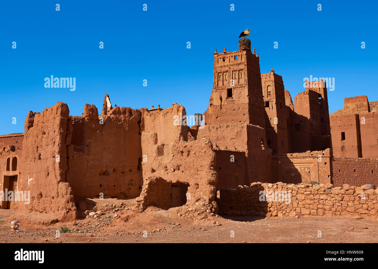 Stork nesting on the Glaoui Kasbah's of Tamedaght in the Ounilla valley set surrounded by the hammada (stoney) - Stock Image