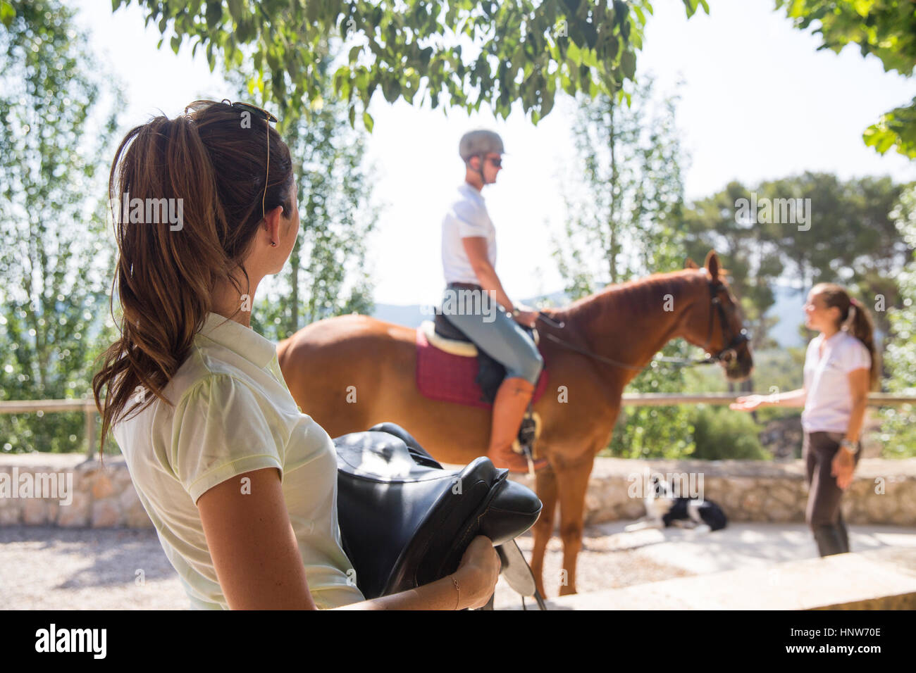 Female groom carrying saddle at rural stables - Stock Image