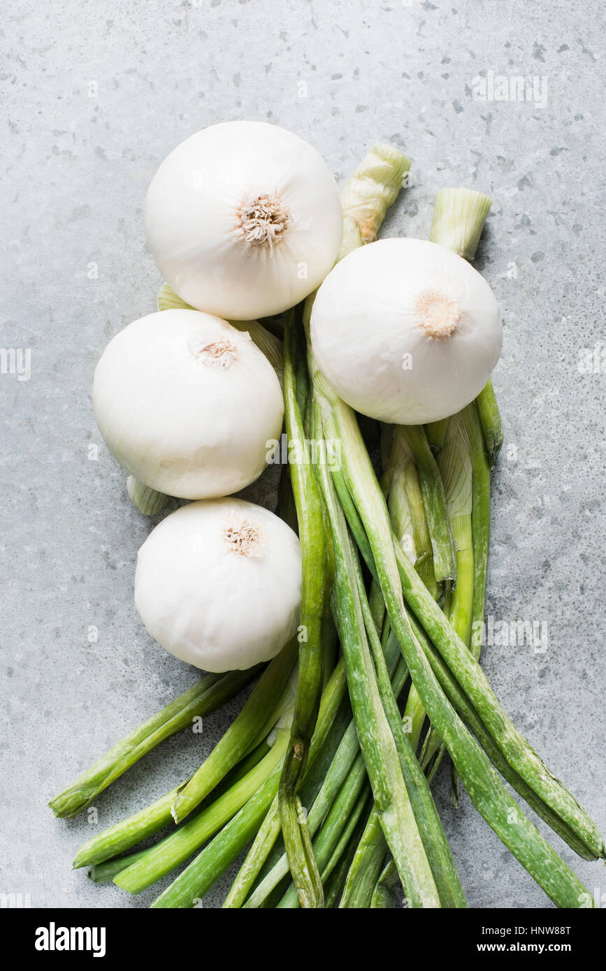 Garlic plant - Stock Image