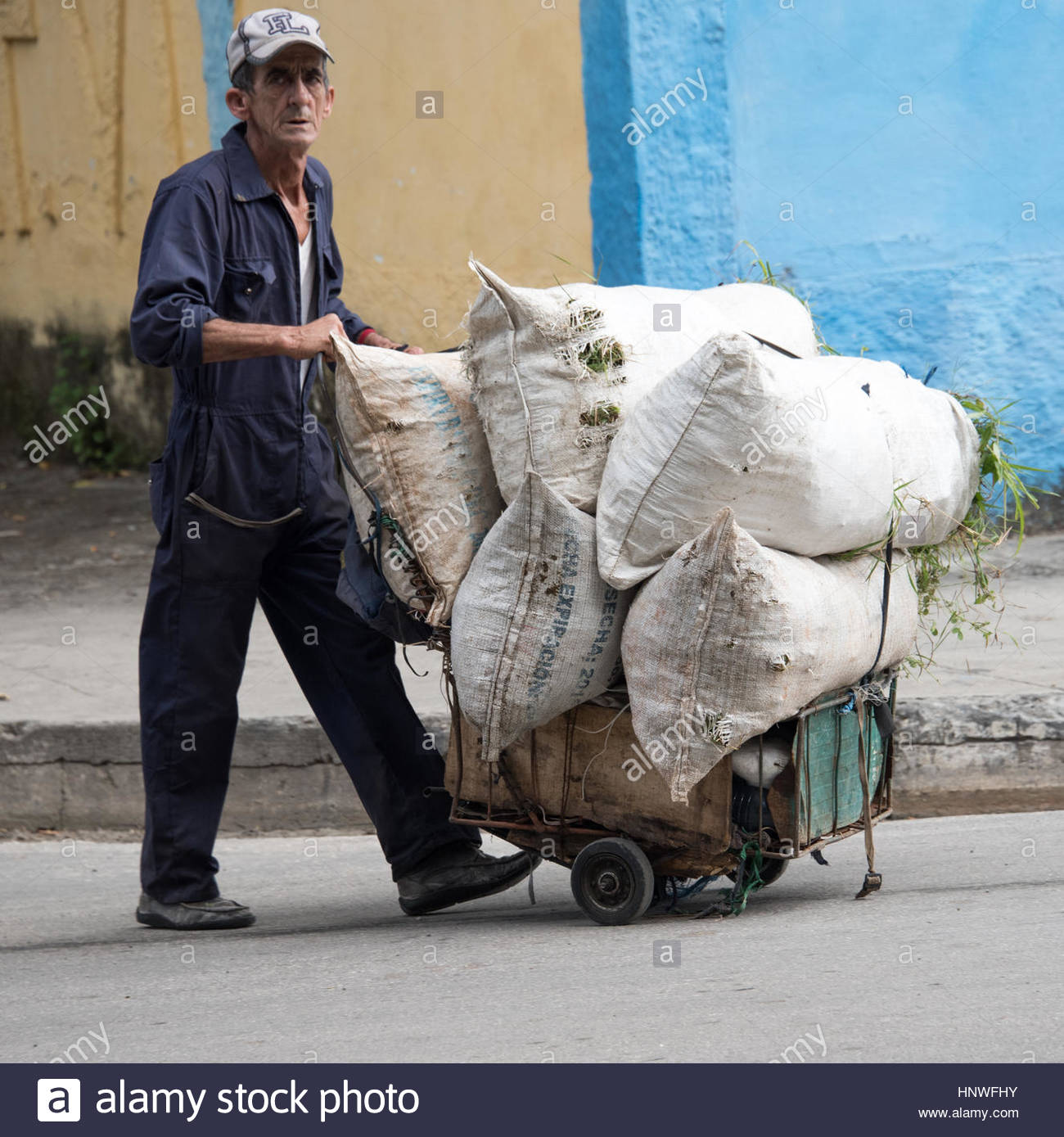 Real senior Cuban man pushing cart with sacs full of grass.  He is carrying food to his animals. Lifestyle of seniors - Stock Image
