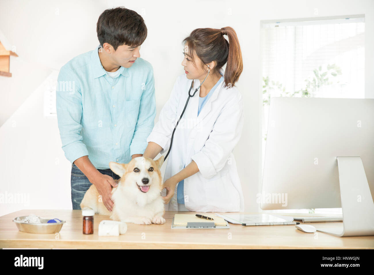 Man visiting a vet with his pet - Stock Image