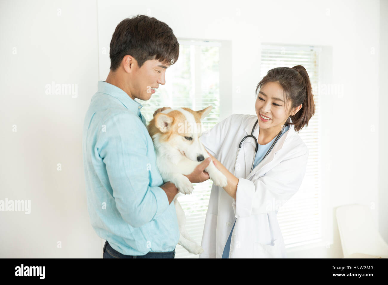 Man visiting a vet for his pet - Stock Image