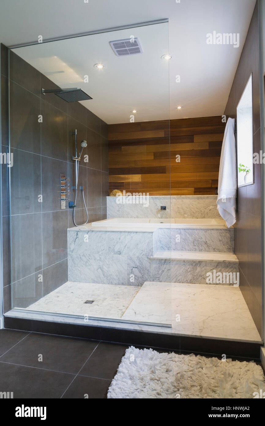 Wet room style glass shower stall with grey and white marble steps ...