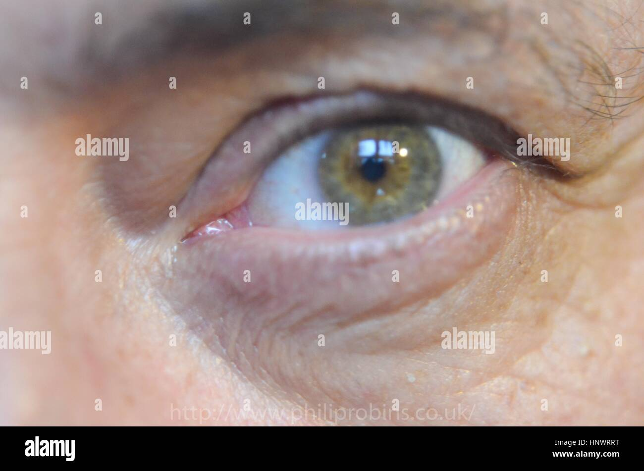 Middle aged eyes , man topical anatomy Stock Photo: 133947852 - Alamy