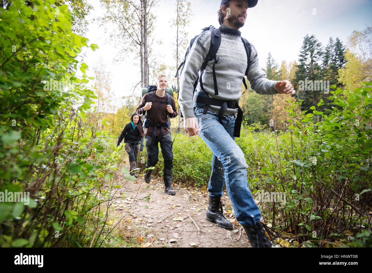 Young Man With Friends Hiking On Forest Trail - Stock Image